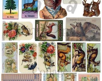 Woodland Stuff Number 1 Digital Download Collage Sheet