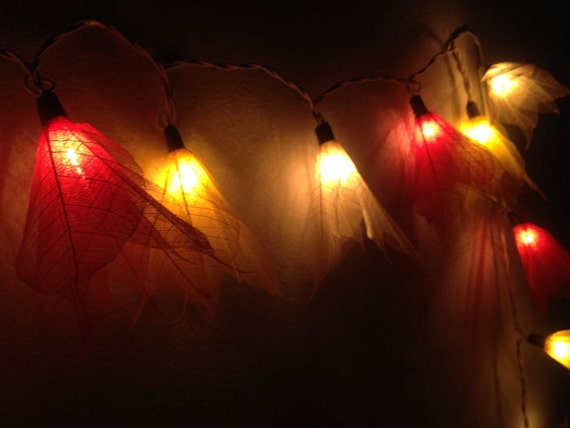 fairy string lights from real dry leaves for by icandylighting