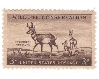 1956 3c Wildlife Conservation - Pronghorn Antelope - 10 Unused Vintage Postage Stamps - Item No. 1078