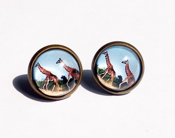 Giraffe Earrings, South Africa Stud Earrings, Giraffa Earrings, Animal Scene Picture Earring, Africa Photo, Animal Earrings, Giraffa, Round