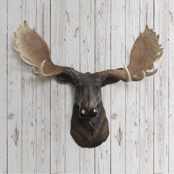 Moose Head Faux Taxidermy The Alberta Resin By Wallcharmers