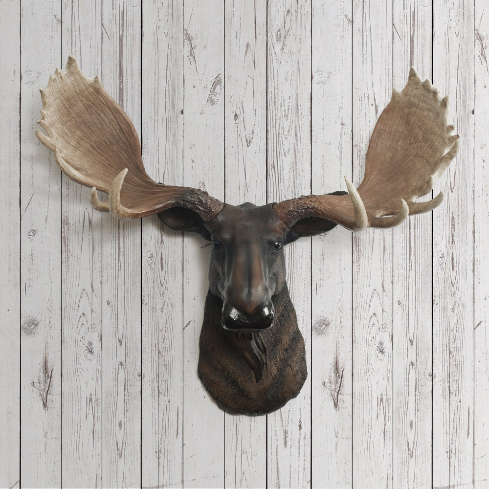 Moose head faux taxidermy the alberta resin by wallcharmers - Fake moose head ...