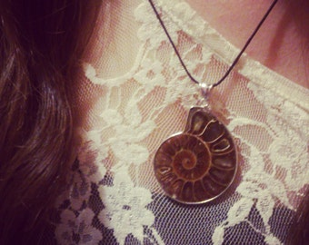 Ammonite necklace - Fossil Pendant - Natural Jewelry - Gift Boxed and Wrapped