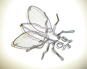 Fly on the Wall--3-D steel wire sculpture