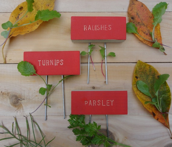 Items Similar To Vegetable Herb Garden Markers With Pins