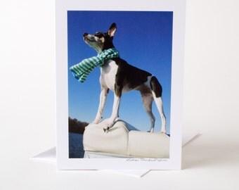 Photo Greeting Card, Blank Card, Photo Card, Dog, Boat