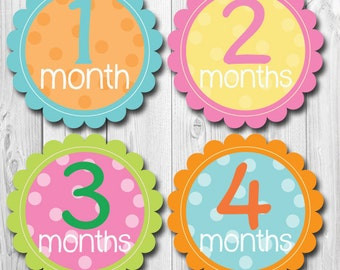Monthly Baby Bodysuit Stickers, Baby Girl Monthly Stickers, Baby Month Stickers -Months 1-12