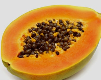 Papaya fruit plant 20 seeds