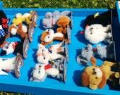 Shop Display + 12 Pocket Pets + K16 - Ara Jeretzian - Handmade in Vienna 1960s - pure wool - die liebsten Tiere der Welt - RARE collectible