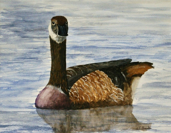 canada goose original
