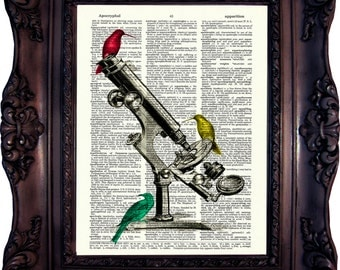 Bird Art Print on Book Page.Vintage Microscope with Birds. Geekery microscope. Dictionary page book art. Antique microscope. Code:221