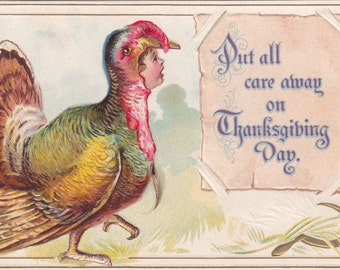 1910 Thanksgiving Child Dressed Up As A Turkey Embossed Postcard