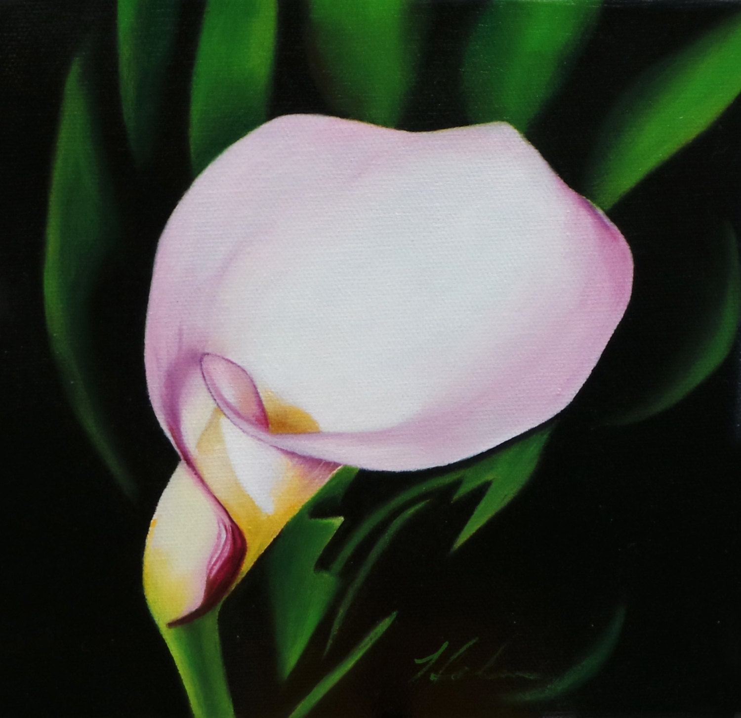 White Calla Lily Flower Painting