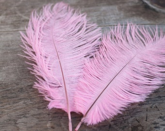 Pink Ostrich Feathers - Wedding Feathers - DIY Headband Feathers - 6 - 8 in.
