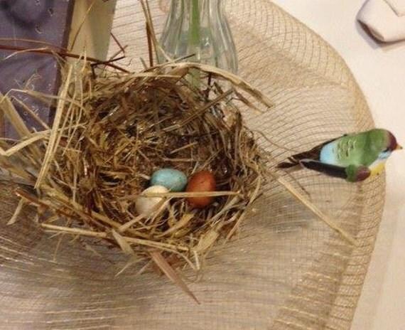 Articles similaires nids d 39 oiseaux pour d corer votre for Decorer une cage a oiseaux