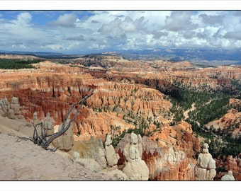 Bryce Canyon, Utah, Wall Art, Landscapes, American West, Travel Photography