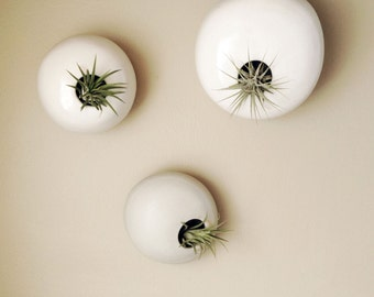 MADE TO ORDER  - Three Hanging Wall Planter Air Plant Pods -  Ceramic Wall Planter Installation - Wall Pods Airplanters Planter Pods