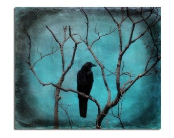Metallic Blue Print, Blackbird, Nature Art, Bird, Vignetted, Raven Art Image, Fade-Resistant Photograph, Turquoise Blue  -  Aqua Zen