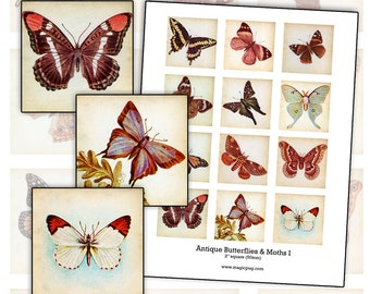 Antique Moths and Butterflies  I 2x2 inch digital collage sheet inchies 50mm square