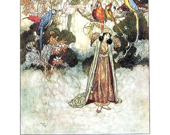 Dulac Fairy Tales - Beauty and The Beast - 1979 Vintage Book Plate - 8.5 x 11