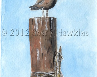 Seagull at rest-fine art print,  print of original watercolor, seagull, dock, marina, dock piling, shore bird, coastal art