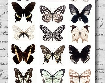 Butterfly - SMALL Black and White - Collage Sheet - A4 Digital Collage Sheet - For unlimited number of prints