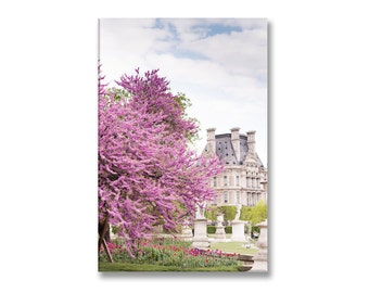 Paris in Spring Photo on Canvas, Blossoms at the Louvre Gallery Wrapped Canvas, French Home Decor, Large Wall Art