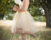 Champagne Tulle Tutu Skirt Knee Length with Satin Sash Adult Custom size