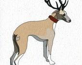 Illustrated Deer Greyhound Blank Card