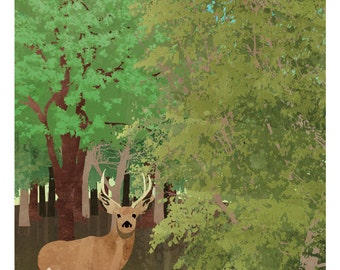 """Nature Poster: Temperate Forest, 12 x 24"""""""