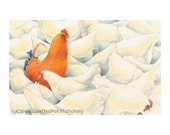 Farm Animal Note Cards - Pack of 5 - GREAT Christmas Gift or Stocking Stuffer - White hens and orange rooster, pigs, brown cow, blue lamb