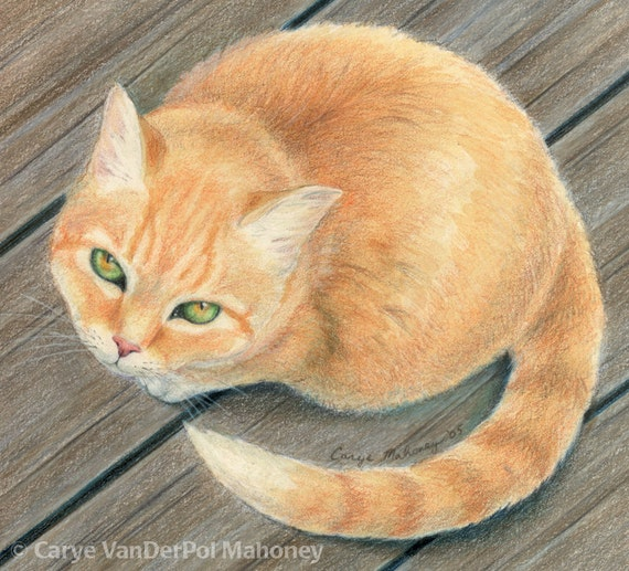 "Orange tabby cat with green and gold eyes, sitting on wooden surface and looking up at viewer - Art Reproduction (Print) - ""Meow"""