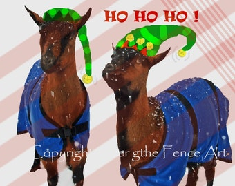 Ho Ho Ho Funny Goat Christmas Card Card Goats in Elf Hats and Blue Blankets Goats in Snow Card