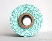 Caribbean Aqua Stripes Twine - 20/50/240 yds - by The Twinery