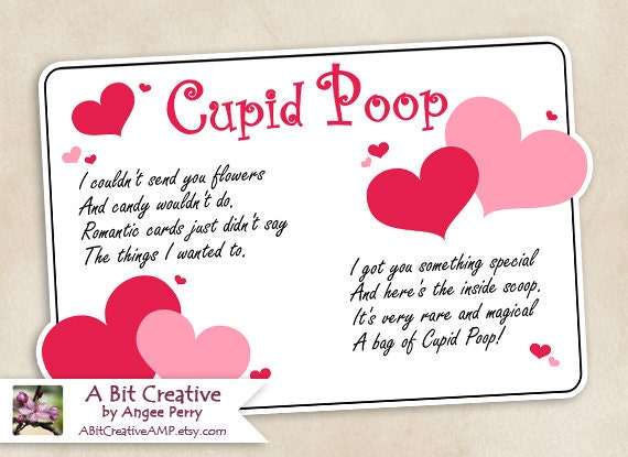 Cupid Poop Valentines Day Sweetheart Gag Gift Design DIY