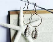 Golden small hoops with wire wrapped cowrie shell, Embellished cowrie shell, shell earrings, gift for her by SmileTheOcean