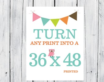 Turn any Print in my Shop into a 36x48 Print