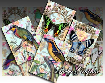 Printable Digital Collage Sheet - Butterflies and birds -  8 ACEO Digital Vintage Tags 2.5x3.5 inch size