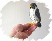Peregrine falcon, knitted bird, miniature peregrine, peregrine ornament, miniature bird