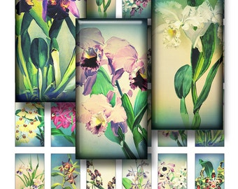Colorful orchids - Digital Collage Sheet - 1 x 2 inch Domino Printable Download for glass or resin pendants