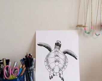 Sea Turtle Ink Drawing - Print