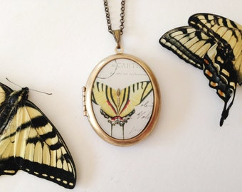 Yellow Butterfly 'Papillon' Locket -  Swallowtail Wings Vintage Illustration - Brass Locket Necklace