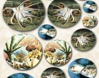 Paper for decoupage - picture for decoupage - rice paper for decoupage - decorative paper -Sea fish shell underwater M021
