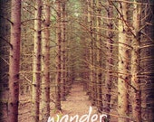 Wander Quote Print, Forest Landscape Nature Photography, Adventure Print Apartment Decor, Inspirational Quote Cabin Wall Decor, Nature Gift