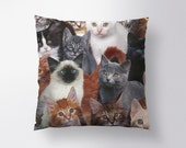 Cats for Days Pillow // Spun Polyester Throw Pillow Case, Cover, With or Without Insert - Made in USA
