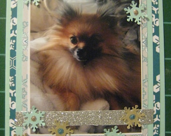 Your Pet's Photo Hand Collaged Card Set. Great Gift! 50% goes to the current select animal protection charity