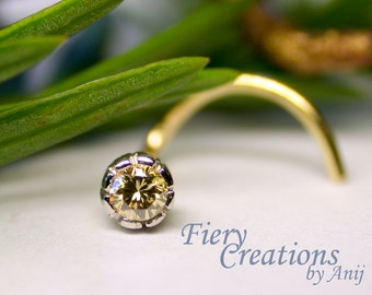 "Nose screw/ Tragus stud  ""Golden Thistle Bud""- 18k SOLID White & Yellow Gold with a 5 pt luscious Champagne Diamond, OOAK"