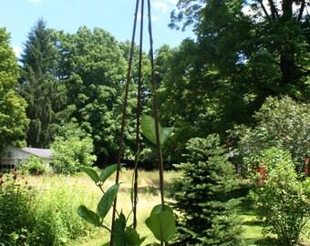 Garden Tripod 5'