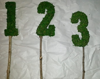 Moss Numbers on natural branch or wood dowel.