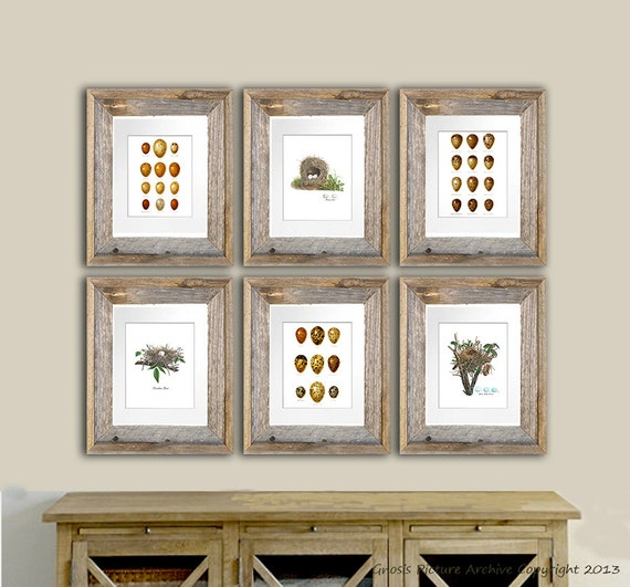 Shabby Cottage Chic Nest Prints Home Decor Wall Art ~ Easter decor bird nest prints set of eggs print cottage